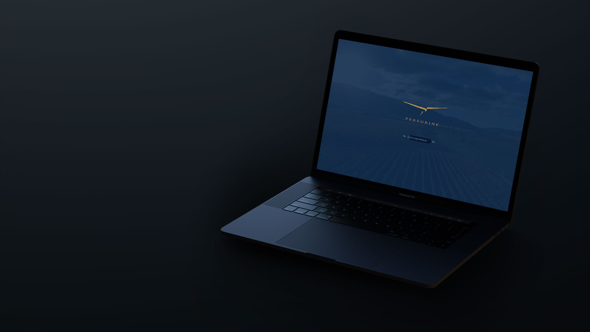 Peregrine Website Laptop